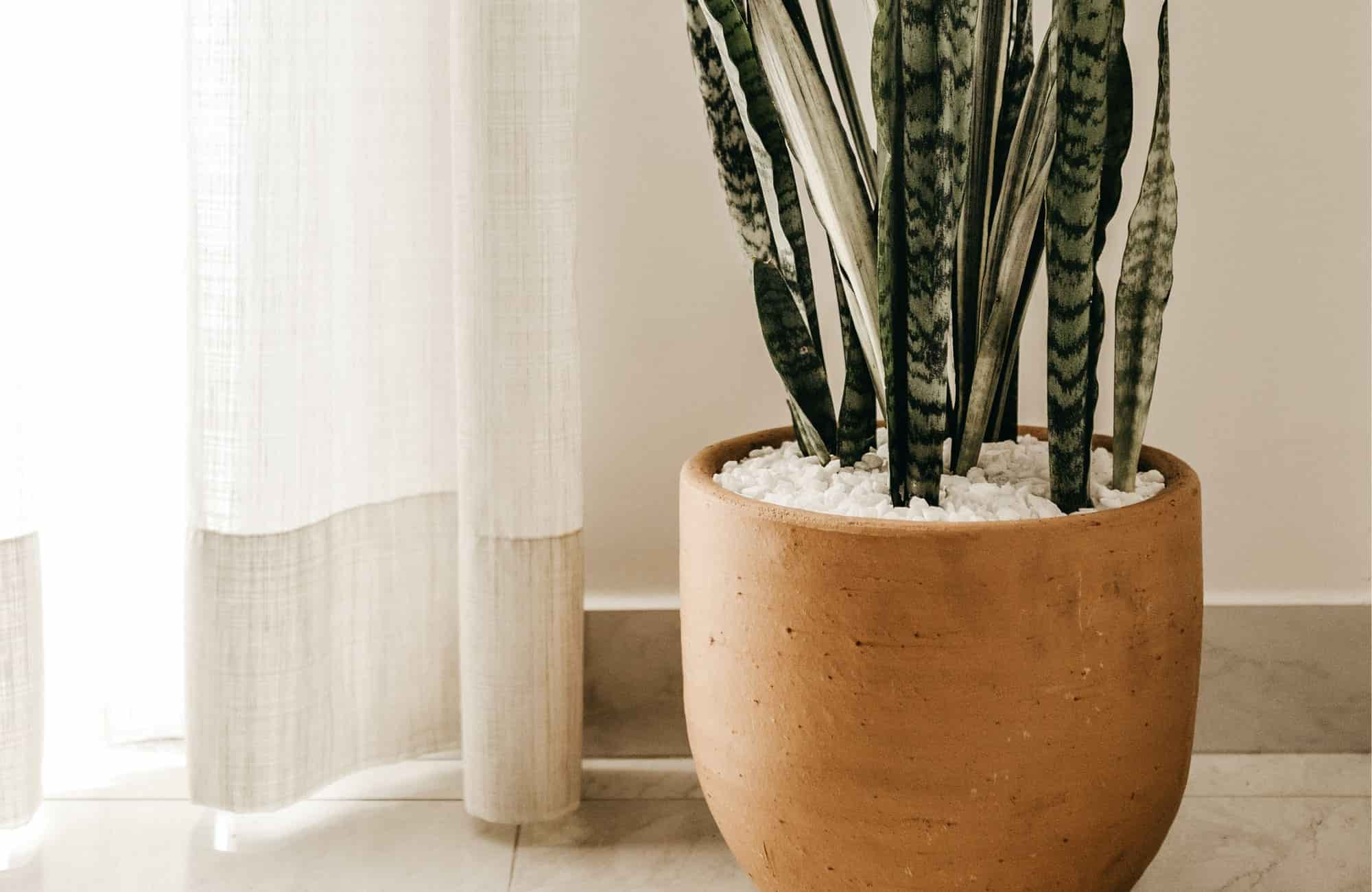 Spotlight on: Earthy tones and natural interior design