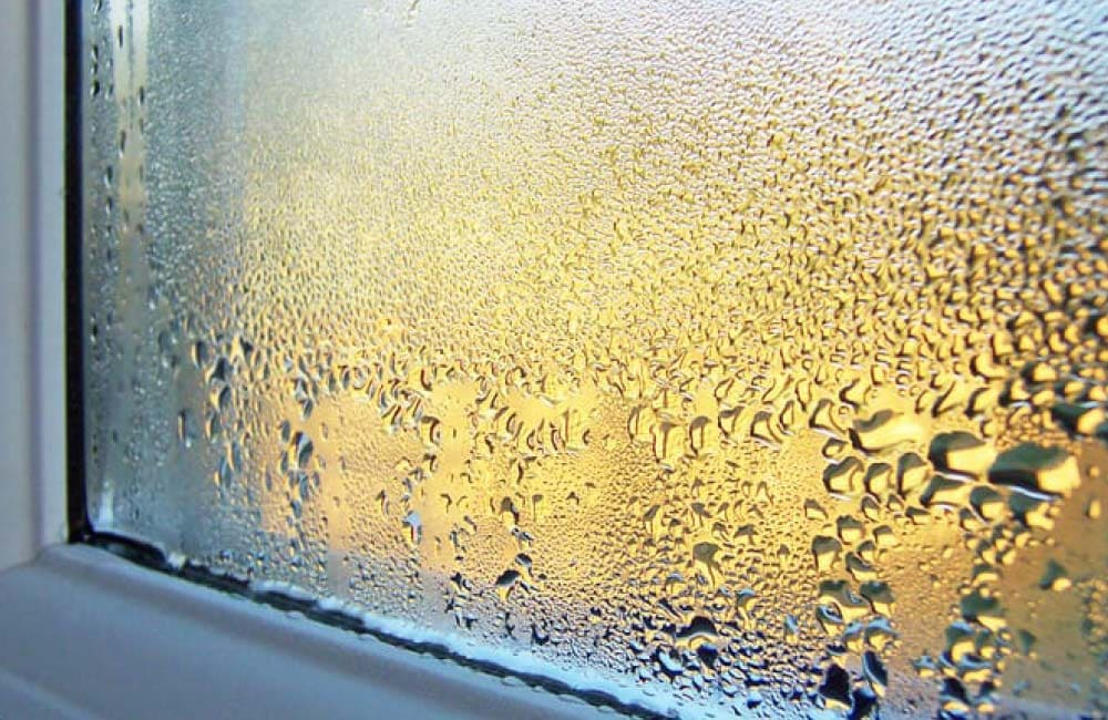 How to prevent mould on your windows during winter